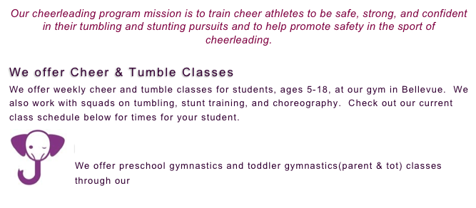 Tiger Tumble & Cheerleading and Tumble classes